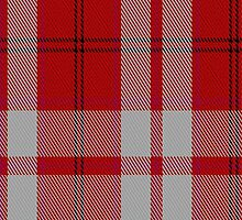 01859 Cameron Hose #2 Clan/Family Tartan Fabric Print Iphone Case by Detnecs2013