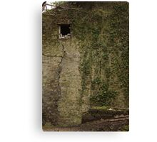 An Oddly Empty Wall Canvas Print