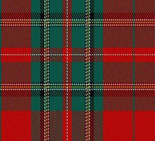 01867 Campagna Center Tartan Fabric Print Iphone Case by Detnecs2013