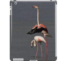 Ballet!! iPad Case/Skin