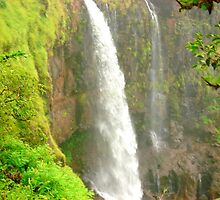 Waterfall by Arvind Singh