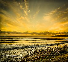 Byron Bay Page 5 by fabphotos