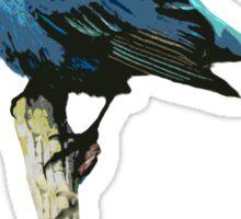 Word - Wolf-Bird Sticker