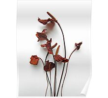 Iron Lilies Poster