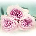 Roses with a vintage touch by VintagePT