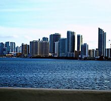 Miami Beach Skyline - South Florida Cityscapes by WayfarerPrints