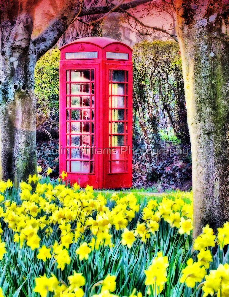 Communicating With Spring - Orton Effect by Colin  Williams Photography