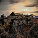 Of Times Past by Charles & Patricia   Harkins ~ Picture Oregon