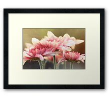 No matter the shadows, your presence is like sunlight on my face. Framed Print