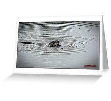 """ Walking around a lake in France, we saw the water move!!! Then this appeared! Greeting Card"