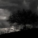 Stormy sky for a Romantic Dream .... by 1morephoto