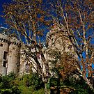 Majestic Combourg castle by Karo / Caroline Evans (Caux-Evans)