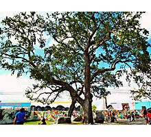 Arts District Miami - Sunny Florida Photography Photographic Print