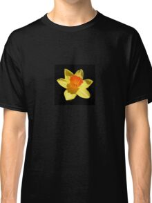 Spring Daffodil Isolated On Black Classic T-Shirt