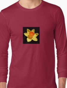 Spring Daffodil Isolated On Black Long Sleeve T-Shirt