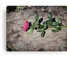 Discarded Rose Canvas Print