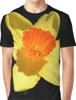 Spring Daffodil Isolated On Black Graphic T-Shirt