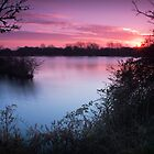Sunrise at Storton Pits Nature Reserve in Northampton by Ralph Goldsmith