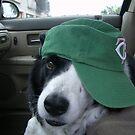 D.O.G In His Ballcap by Tina Hailey