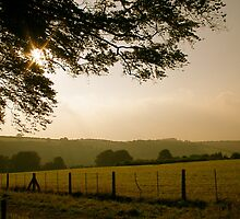 Dusk in the English Countryside by lanesloo
