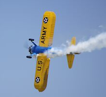 US Army Trick Plane by Tina Hailey