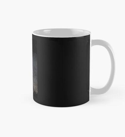 Photographed eclipse Mug