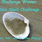 Banner for challenge Winner - Sea Shells by quiltmaker