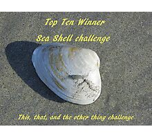 Top Ten Winner - Sea Shells Photographic Print
