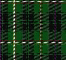 01893 Campbell, Marquis of Lorne Commemorative Tartan Fabric Print Iphone Case by Detnecs2013
