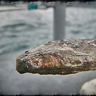 Rust on an Anchor by Infinite2000