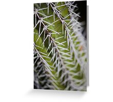Up Close and Spiny Greeting Card