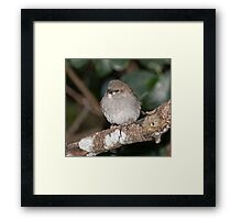 Just waiting for Mama Framed Print