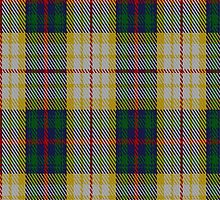 01908 Canice-Moodie Tartan Fabric Print Iphone Case by Detnecs2013