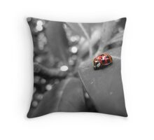 Ladybird on a leaf (3) Throw Pillow