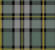 01911 Cape Breton (yellow stripes) District Tartan Fabric Print Iphone Case by Detnecs2013