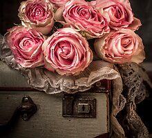 Vintage Beauty by Julie Begg