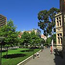 The Cultural Walk! North Terrace from the East End. Adelaide..  by Rita Blom