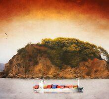 Tropical Cargo by Dragos Dumitrascu