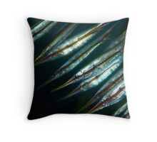 Razorfish Formation Throw Pillow