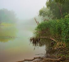MacQuarie Mists by aussie-visions