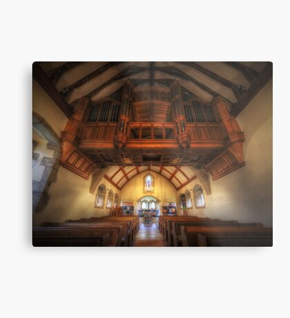 Hanging Organ Metal Print
