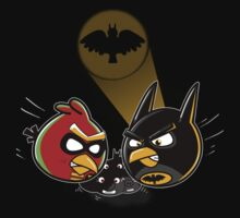 Batbird And Robin by weRsNs