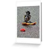 The Honey Eater and the Nectarine Greeting Card