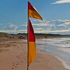 Wanda swim flag 8am, Autumn by Marion Chapman