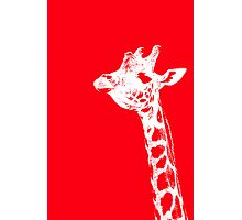 The Red Giraffe Photographic Print