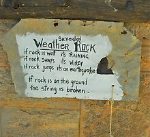 Aussie Weather Rock by Penny Smith