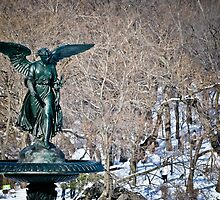 Bethesda Fountain by Gustavo Bernal