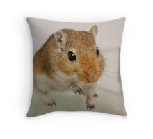 Gerbil cuteness Throw Pillow