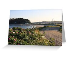 John's Cove Beach in Summer Greeting Card