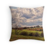 A lovely day Throw Pillow